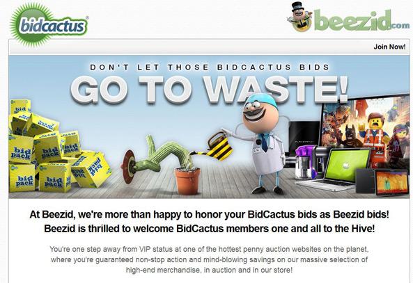 BidCactus is now Beezid